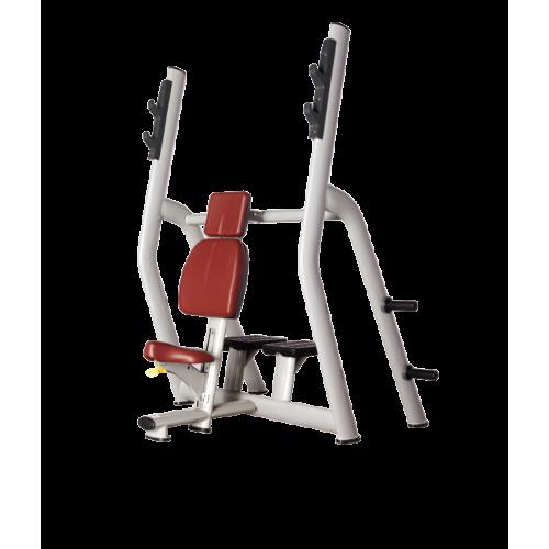 Скамья для жима Bronze Gym H-025B вертикальная